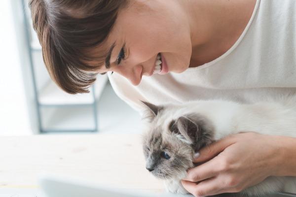 домашние животные могут сделать вас более здоровыми
