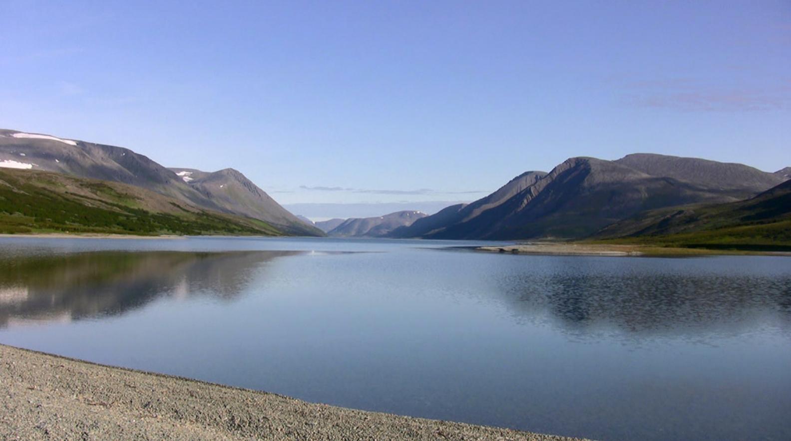 Озеро Гасси Телеветеринар