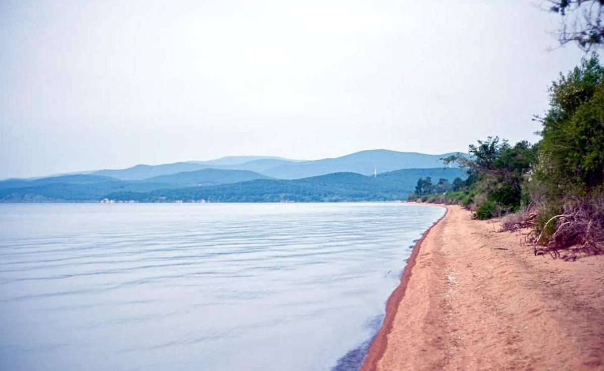 Озеро Ханка Телеветеринар